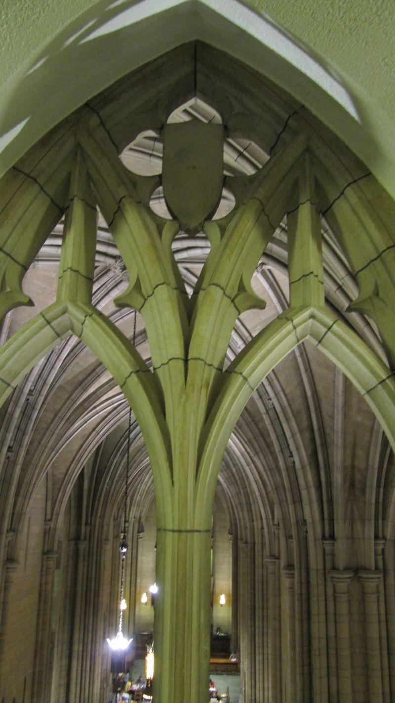 Cathedral bones
